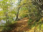 Walk along the banks of the River Benaize, into ancient forest, just minutes away from the cottage.
