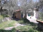 You can park your car right outside the house, next to the big olive tree