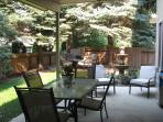 Back yard patio area showing water feature and fire pit area.