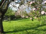 Vue du jardin au printemps