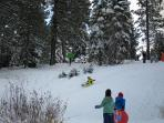 A sledding hill is a short walk (150 feet) from Shore Camp. Great for the kids!