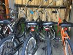 We provide a variety of bicycles for our guests to explore the neighborhood.