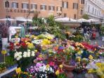 Campo de Fiori - daily flower market