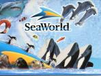 Seaworld Resort is 15 minutes South of the house.