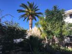 Jardín frondoso enfrente de la Masía
