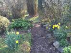 Pathway to lawn and wooded copse
