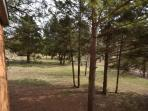 The view from the screened in porch is a park area on one side.
