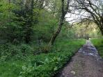 Just a couple of min from the house is the Vale walk In spring the banks are covered with blue bells