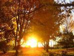 Innisfaire Sunrise