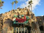 Rainforest Cafe is lots of fun for kids!