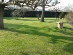 Parc de verdure clôturé devant la maison