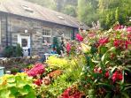 Coachmans Cottage - A Tranquil Hideaway