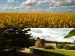 Le CLOS DU MANOIR, votre havre de repos à la campagne à seulement 85km de Paris et 58km de Rouen.