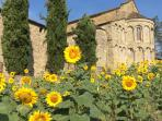 Nearby, the church at Romena preserves a certain charm in the Casentino.