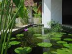 Lilies in the Koi Pond