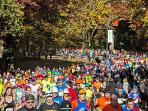 NYC Marathon - Running thru Central Park