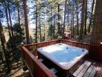 Hot tub surrounded by towering trees