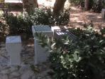 Estrno : scacchiere