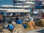 You can buy fresh fish straight from the fisherman only 200 meters from the apartment