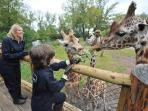 Chester Zoo - Top Attraction