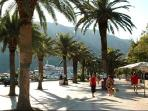 Kotor marina with its millionaire yatchs