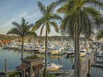 The Marina at Los Sueños-