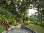 Pooja Kanda - Lush landscape