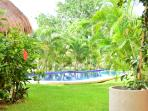 Garden and swimming pool.