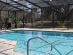Cool of in the beautiful swimmingpool 40x20 feet.