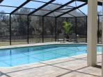 You can also watch the horses on the covered deck of the swimming pool.