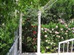 Luxurious 4-star apartment - garden