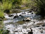 the beautiful bear canyon creek
