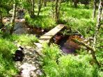 river walk. (bridge to island with water falls)