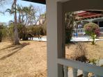 vue du jardin depuis votre terrasse