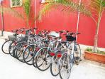 biciclette incluse, con seggiolino da manubrio o da portapacchi