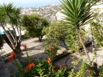 Garden, citrus orchard with spectacular sea views