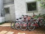 Four adult bikes rented for you!  Free!  Outdoor shower with hot and cold water.