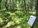 Informational markers are posted along the hiking trail.