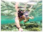 Coral marine reserve adventure