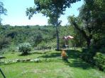 Garden Valley view