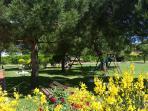 Aprilia Marittima eine Oase an Farben und Pflanzen