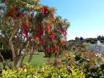 Ziergarten mit Sicht auf den Obstgarten