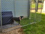 Secure pet enclosure