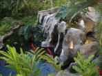 he grounds are beautifully maintained, including a koi fish pond with waterfall