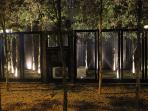 Landscaped garden area(Night view)