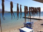 traditional fish taverna, 1,5 km.from villa,sandy beach