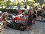 Market in Guiones