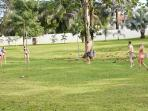 volley area