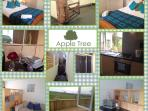 Apple Tree - 5 minutes drive to Pembrokeshire Coast