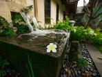 Fountains scattered about the estate add elements of elegance and tranquility.